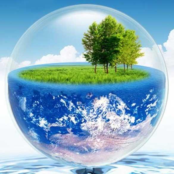آینده ای بدون نفت، پلیمرهای مبتنی بر گیاهان